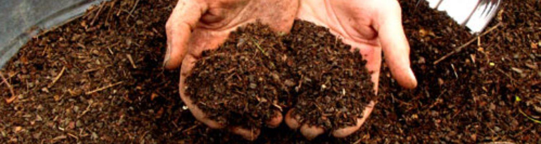 Komposti kiirendajad