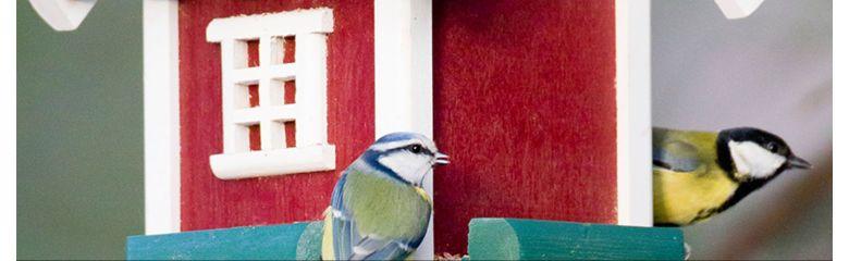 Lindudele kata sobilik toidulaud