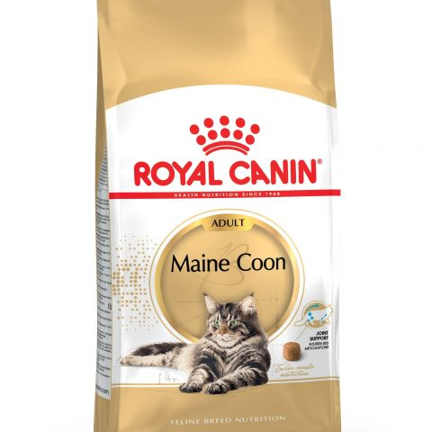 ROYAL CANIN kassitoit Maine Coon 31 2 kg