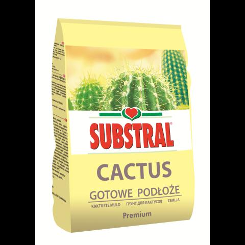 SUBSTRAL Kaktuste muld 3 l